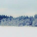 Eisgespenster
